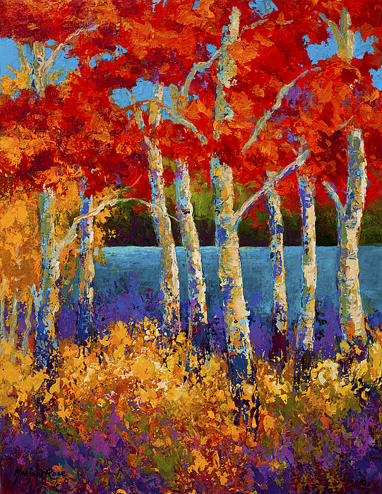 Red Birches Painting By Marion Rose