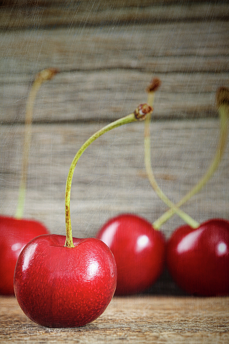 Berry Photograph - Red Cherries On Barn Wood by Sandra Cunningham