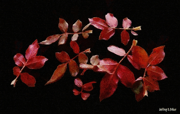 Autumn Painting - Red Leaves by Jeffrey Kolker