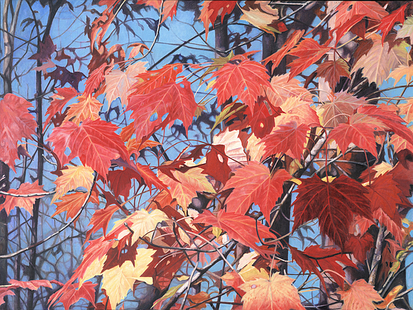 Oil Painting Painting - Red Maples by - Harlan