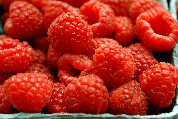 Fruit Stand Photograph - Red Raspberries by Sonja Anderson