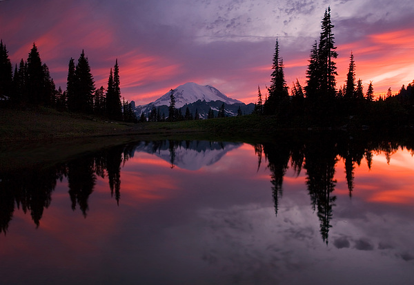 Rainier Photograph - Red Sky At Night by Mike  Dawson