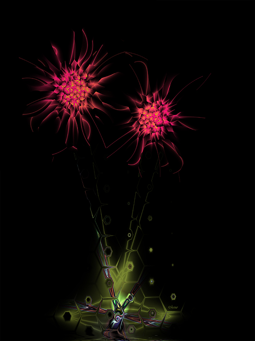 Fractal Digital Art - Red Star Thistle by Harmen Wiersma