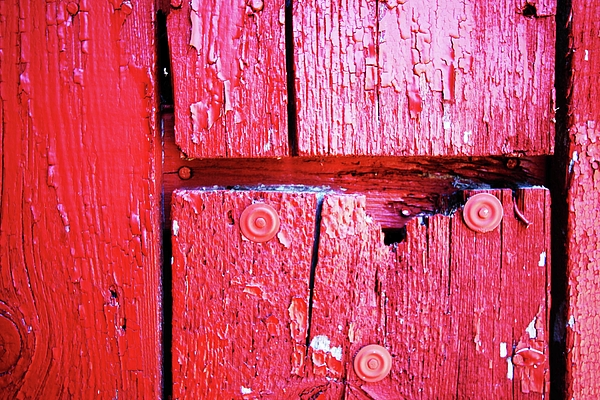 Red Photograph - Red by Ty Helbach