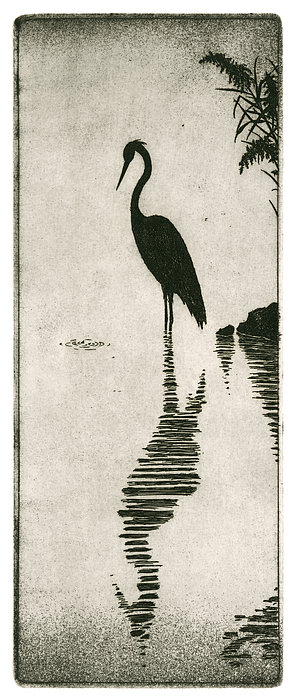 Reflecting Drawing - Reflecting by Charles Harden