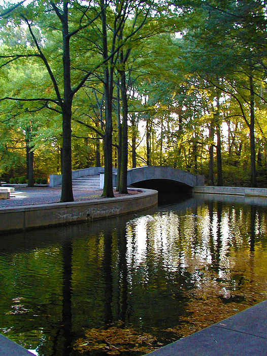 Washington Photograph - Reflecting Pool Roosevelt Park by Bill Cannon
