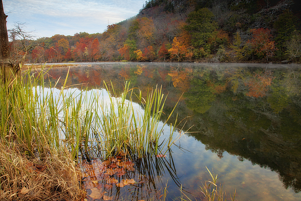 Landscape Photograph - Reflection In The Fort River by Iris Greenwell