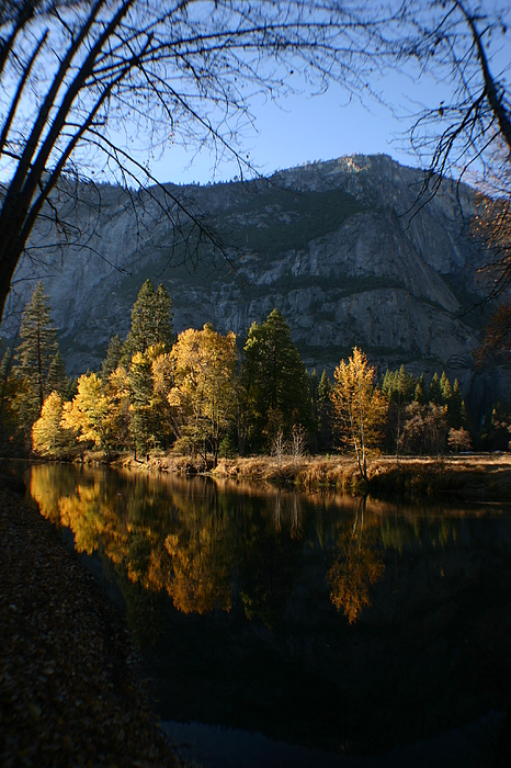 Yosemite Photograph - Reflections by Travis Day