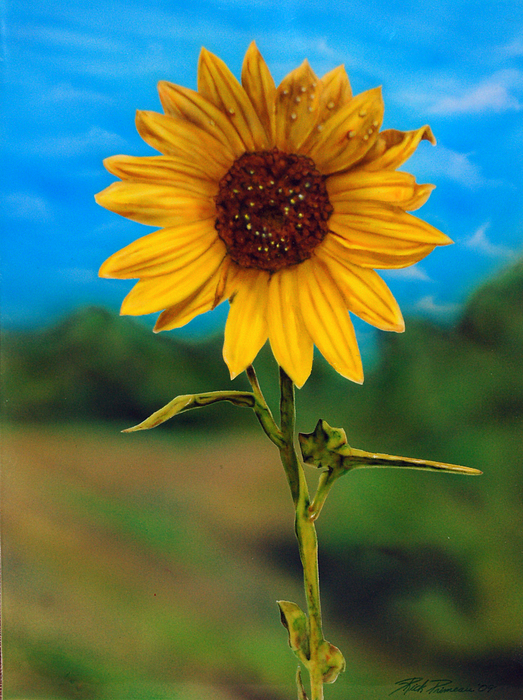 Flowers Painting - Reminiscing Glorious Summer Days by Rick Primeau