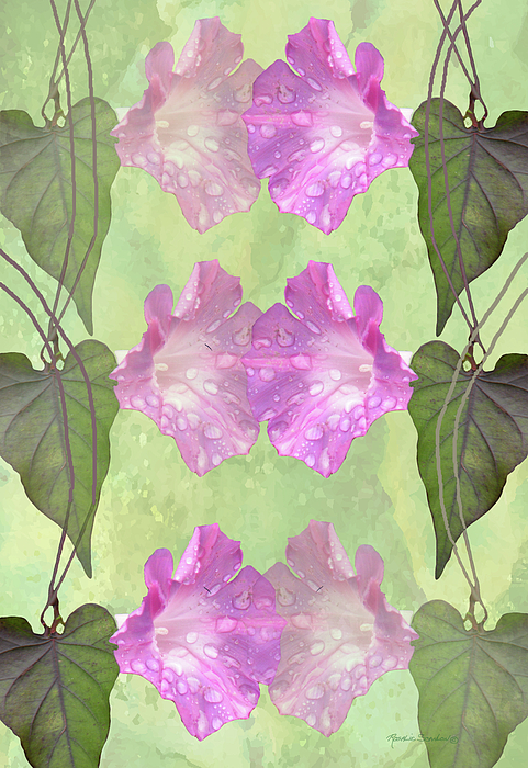 Morning Glories Mixed Media - Repeated Morning Glories by Rosalie Scanlon