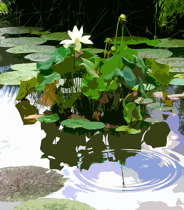 Lotus Photograph - Ripples On The Lotus Pond by John Lautermilch