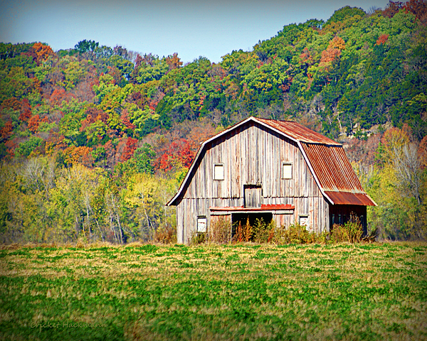 Barn Photograph - Riverbottom Barn In Fall by Cricket Hackmann