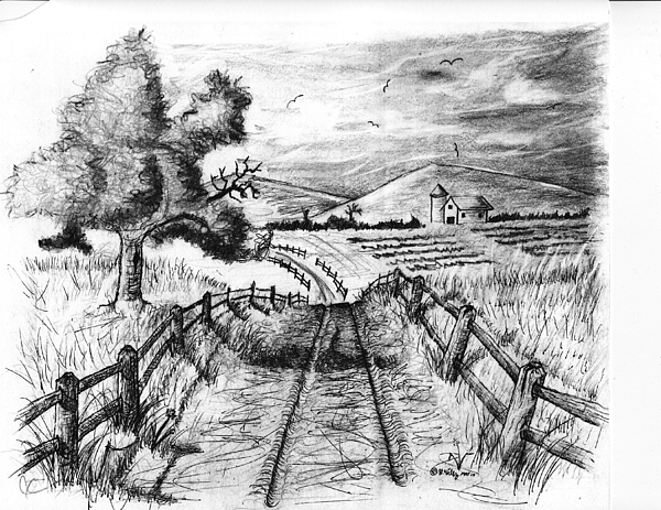 Road Most Traveled Drawing by Hector Velez