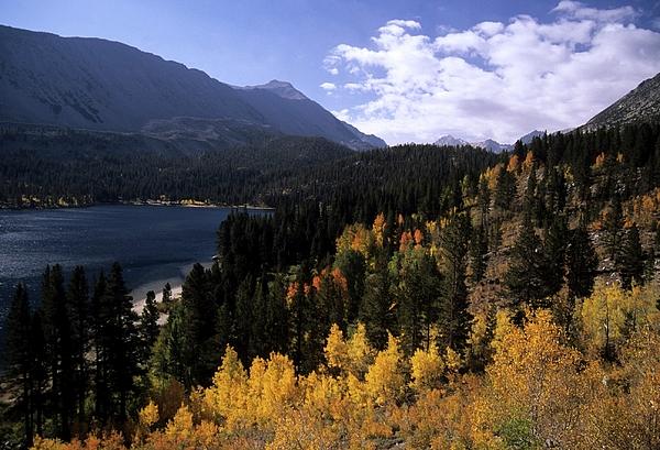 Aspen Photograph - Rock Creek Lake Fall Color by Don Kreuter