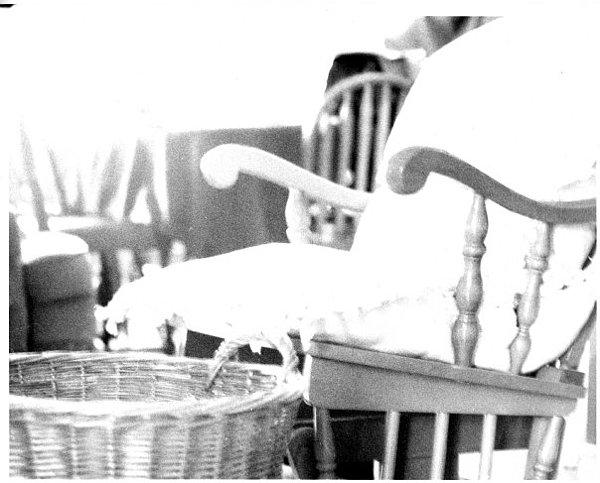 Rocking Chair Photograph - Rocking Chair by Annelisa Fischer
