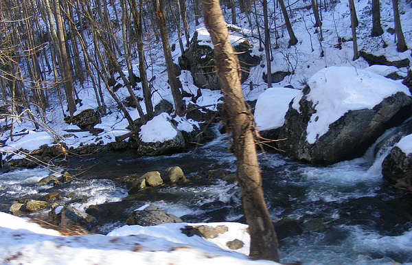 Rocks Photograph - Rocky Stream by James and Vickie Rankin