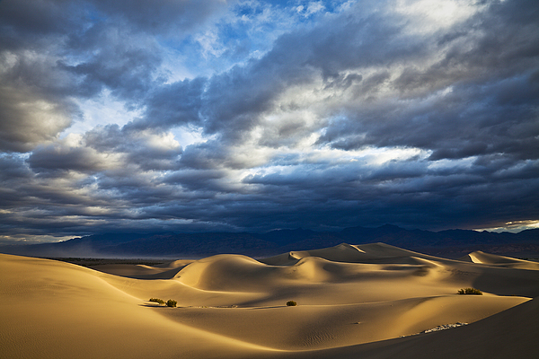 California Photograph - Rolling Sand Dunes by Greg Clure