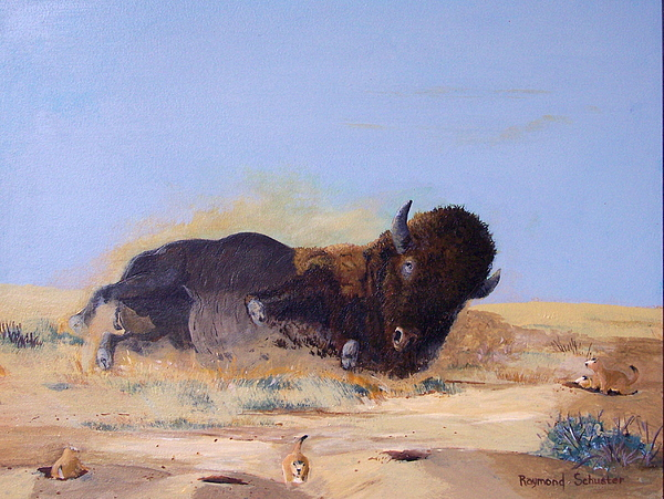 American Bison Painting - Rolln On The Prairie by Raymond Schuster