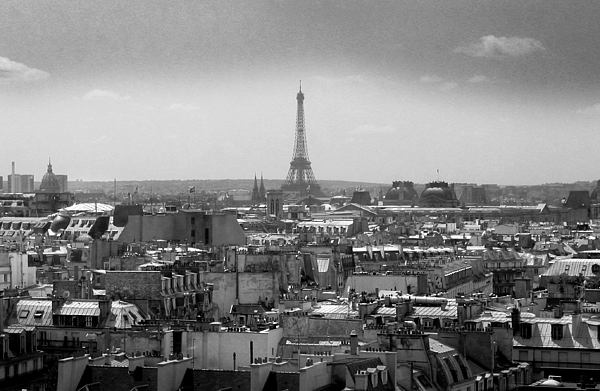 Eiffel Photograph - Roof Of Paris. France by Bernard Jaubert