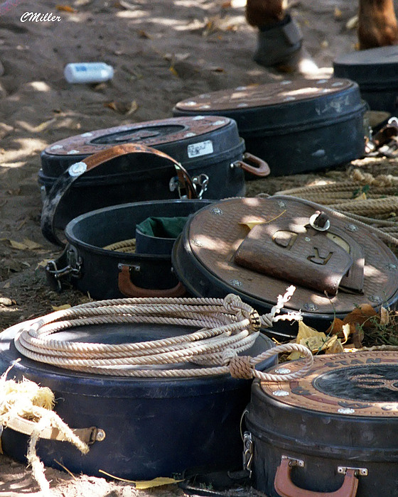 Rodeo Photograph - Rope Cans.. by Carol Miller