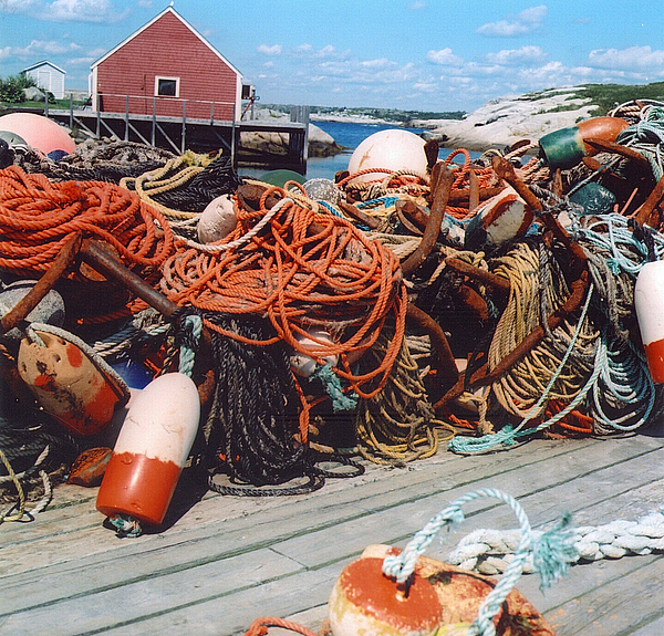 Peggy's Cove Photograph - Ropes by Andrea Simon