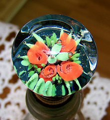 Rose Wine Stopper Photograph by Don Hall