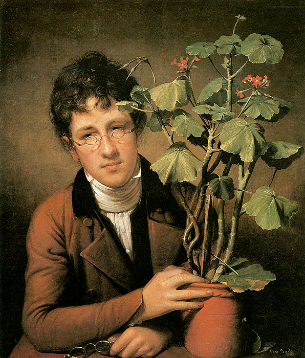 Rembrandt Peale Painting - Rubens Peale With A Geranium by Rembrandt Peale