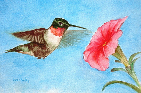 Ruby Throated Hummingbird Painting by Bev Chudey