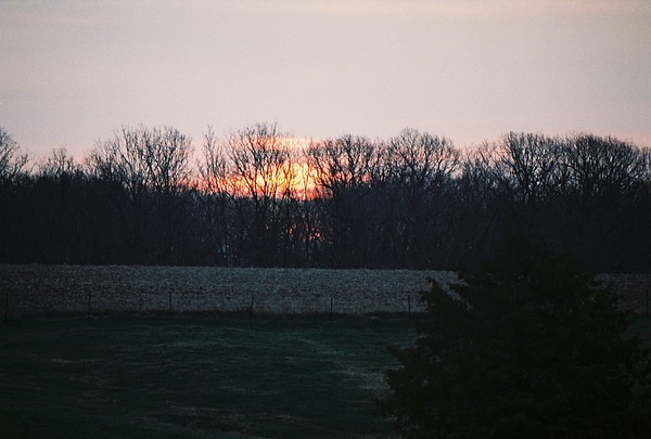 Photo Photograph - Rural Illinois Sunset by C E McConnell