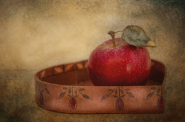 Apple Photograph - Rustic Apple by Robin-Lee Vieira