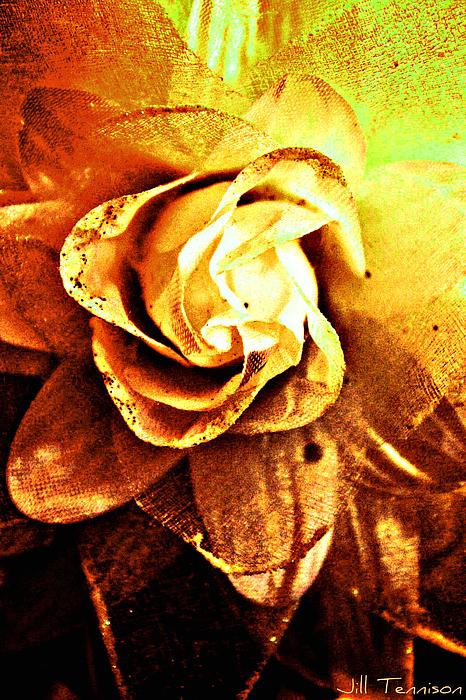 Flower Digital Art - Rustic Rose by Jill Tennison