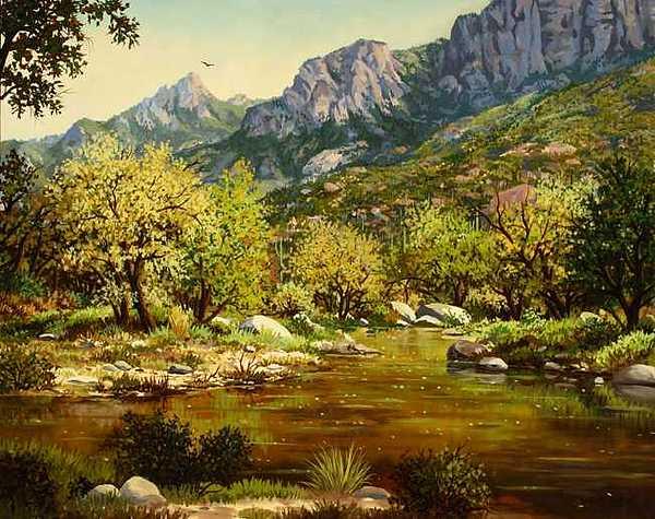 Sabino Canyon Painting by W  Scott Fenton