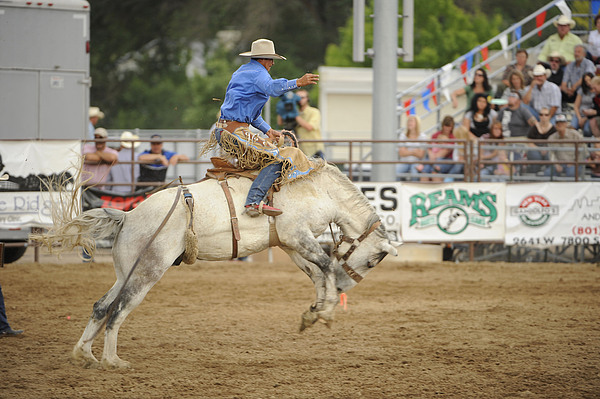 Horse Photograph - Saddle Bronc by Dennis Hammer