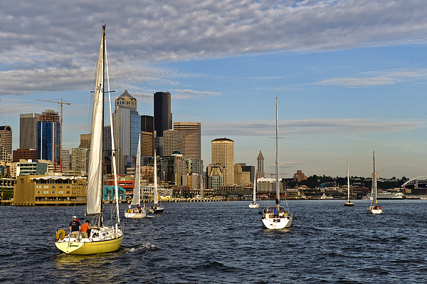 Seattle Photograph - Sail Seattle by Tom Dowd