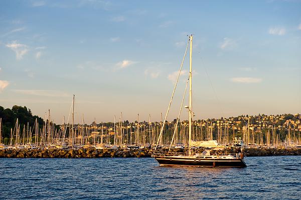 Seattle Photograph - Sailboat Marina by Tom Dowd