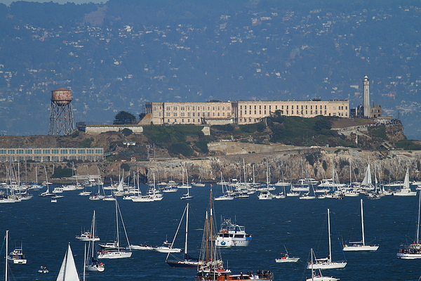 San Francisco Photograph - Sailboats In The San Francisco Bay Overlooking Alcatraz . 7d8080 by Wingsdomain Art and Photography