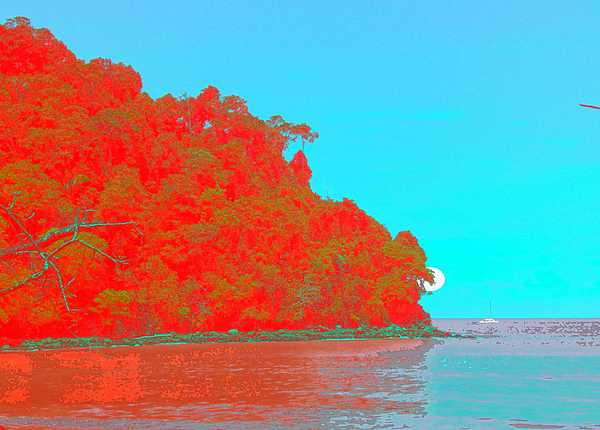 Seascape Digital Art - Sailing By The Sea by Philip Okoro