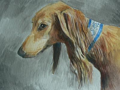 Dogs Painting - Saluki In Watercolor by Phillip Dimor