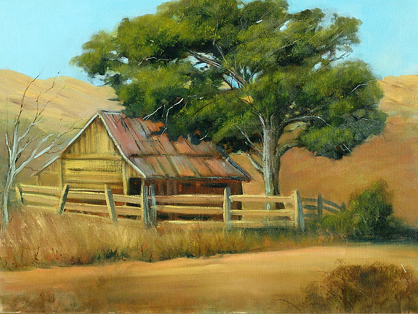 Country Painting - San Joaquin Barn by Sally Seago
