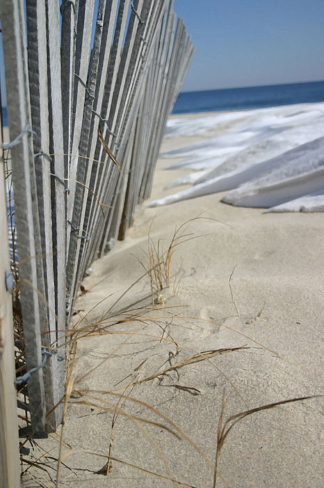 Seascape Photograph - Sand And Snow by Mary Haber