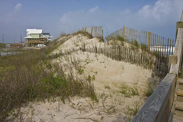 Topsail Photograph - Sand Dunes II by Betsy Knapp