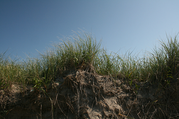 Beach Photograph - Sand Dunes IIi by Jeff Porter