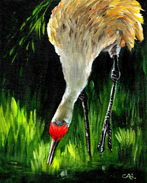 Bird Painting - Sandhill Crane by Carol Allen Anfinsen