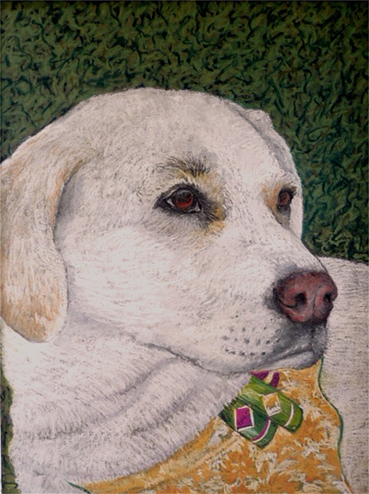 Dog Painting - Sara by David  Horning