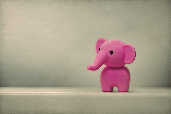 Elephant Photograph - Say Hello To My Little Friend by Evelina Kremsdorf