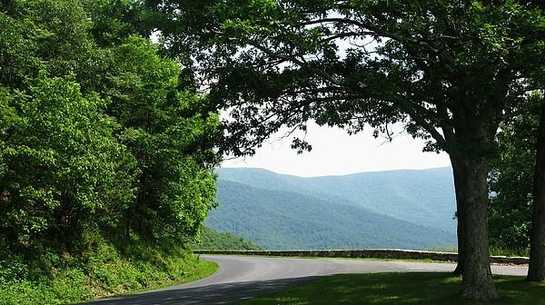 Shenandoah National Park Photograph - Scenic View by Joyce Kimble Smith