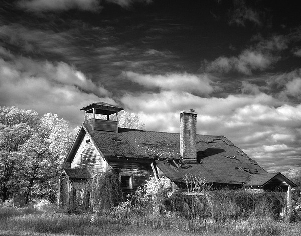 Infrared Photograph - Schools Out by Elizabeth Reynders