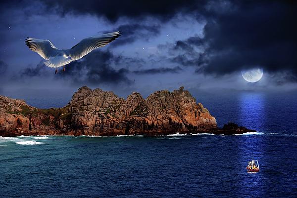 Beautiful Photograph - Seagull Flight by Jaroslaw Grudzinski