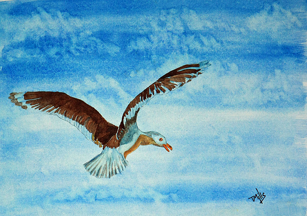 Bird Painting - Seagull In Flight by Terri Mills