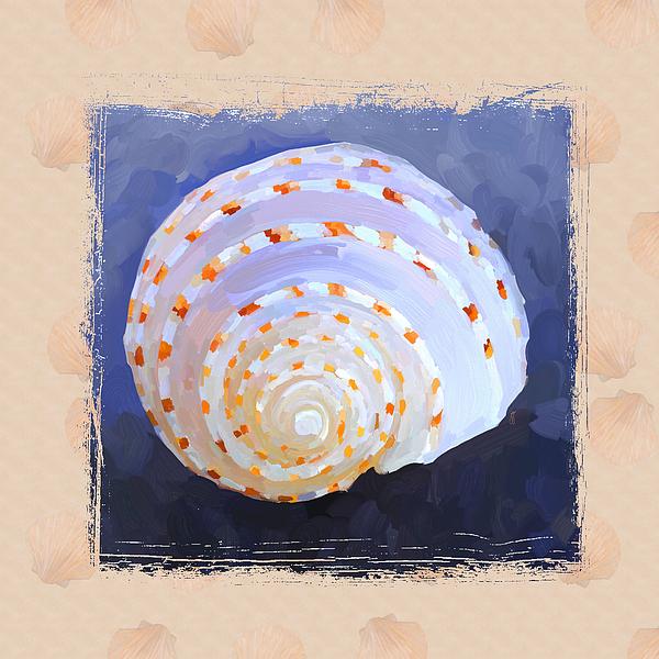 Sea Shell Painting - Seashell Iv Grunge With Border by Jai Johnson
